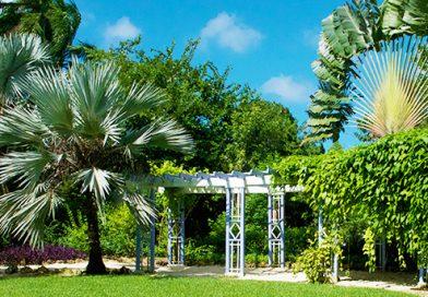 Quen-Elizabeth-Botanic-Garden-Flour-Colour-Garden