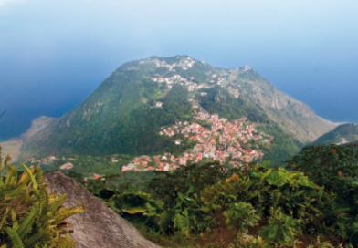 Saba_Overview