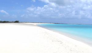 Barbuda Palm Beach
