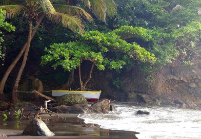 Montserrat_woodlands_beach