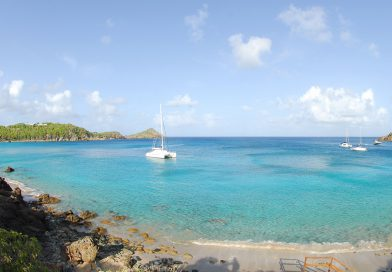 St.Barth_colombier_0