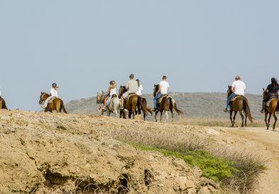 Aruba_Horseriding
