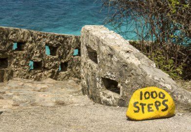 Bonaire_1000_Steps