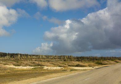 Bonaire_Boca_Olivia