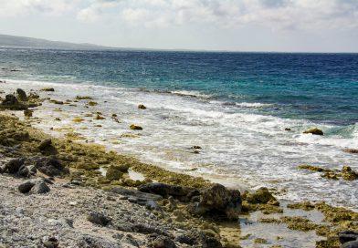 Bonaire_Küste_bei_Devisl_Mouth