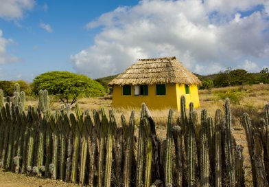 Bonaire_Mangazina_di_Rei_Cultural_Park