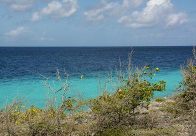 Bonaire_Marine_Park