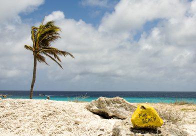 Bonaire_Pink_Beach