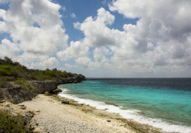 Bonaire_Tolo_Divesite