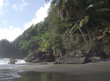 Dominica_Rosalie_Bay