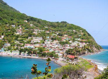 Dominica_Scotts_Head