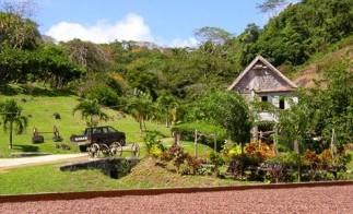 Grenada_Belmont_Estate