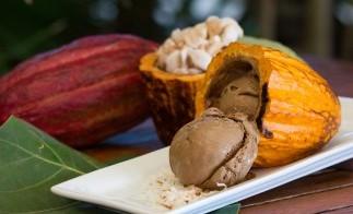 Grenada_Chocolate_Fest