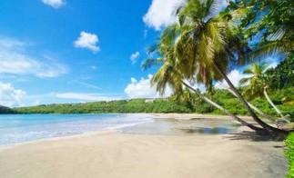 Grenada_Lassagess-beach