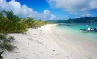 Grenada_Sandy_island