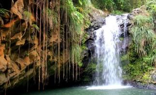 Grenada_annadale_falls