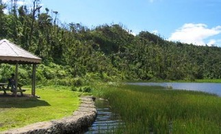 Grenada_grand_etang_park