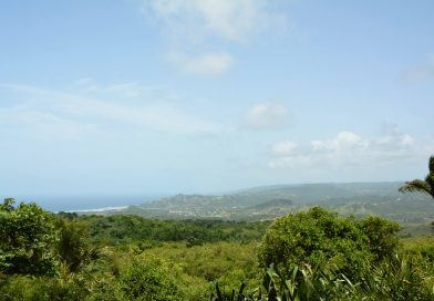 Blick zur Ostküste von Farley Hill