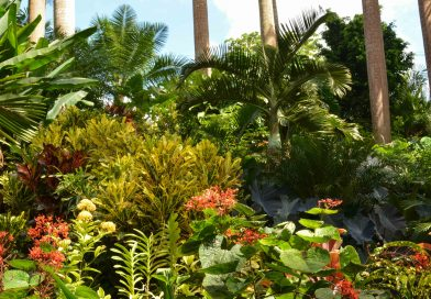 Ein botanisches Kleinod Huntes Garden