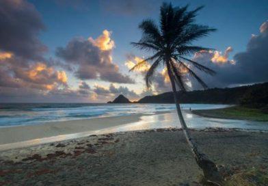 Martinique_ansecharpentier-stemarie-raggioli