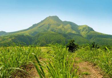 Martinique_montagne-pelee-luc-olivier_0