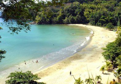 Tobago_Bloody Bay Beach